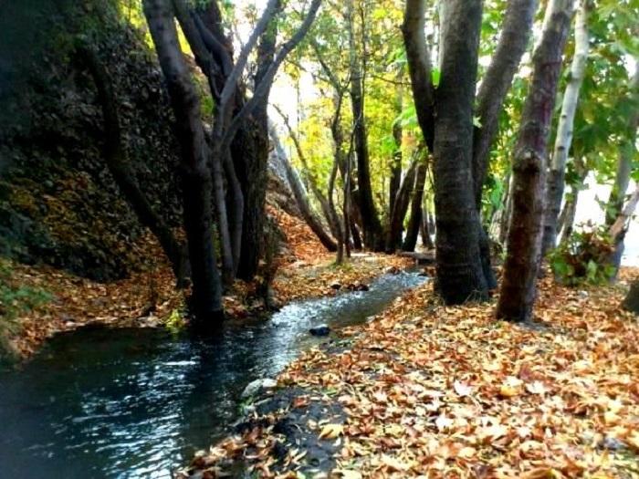 معرفی بهترین مکان های تفریحی شهر مشهد مقدس