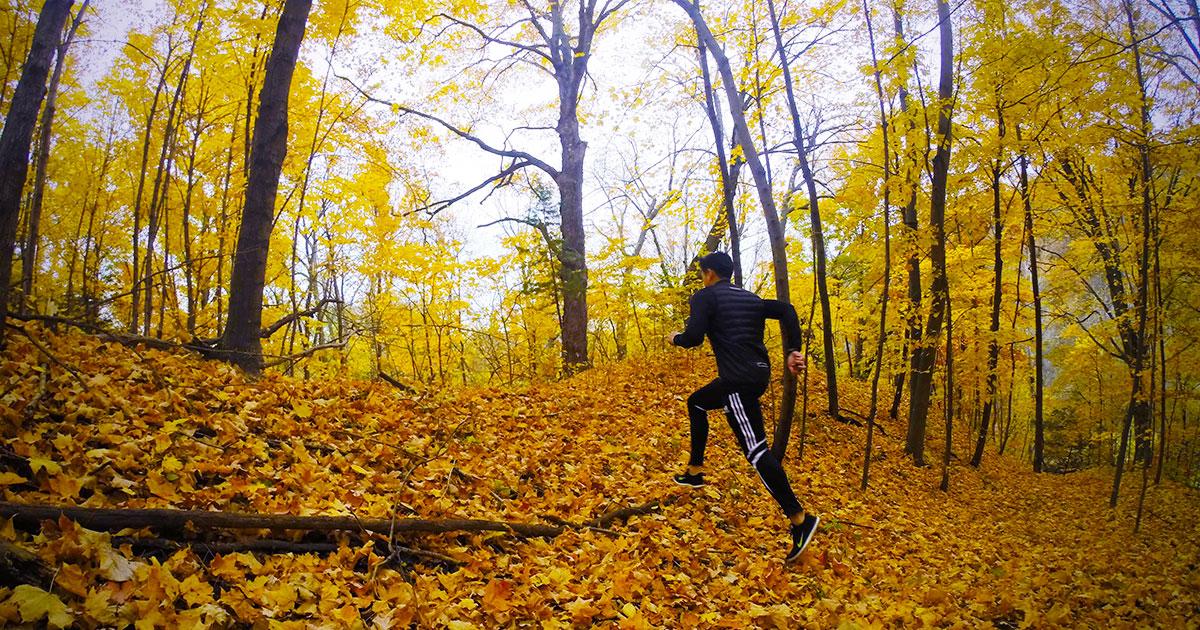 Photo of پیاده روی در فصل پاییز چه فوایدی دارد و چرا باید در فصل پاییز پیاده روی کرد؟