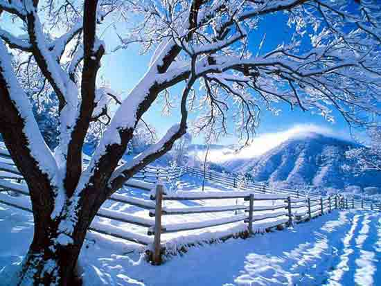 Photo of انشا در مورد زمستان ؛ 6 انشای زیبای ادبی در مورد فصل زمستان