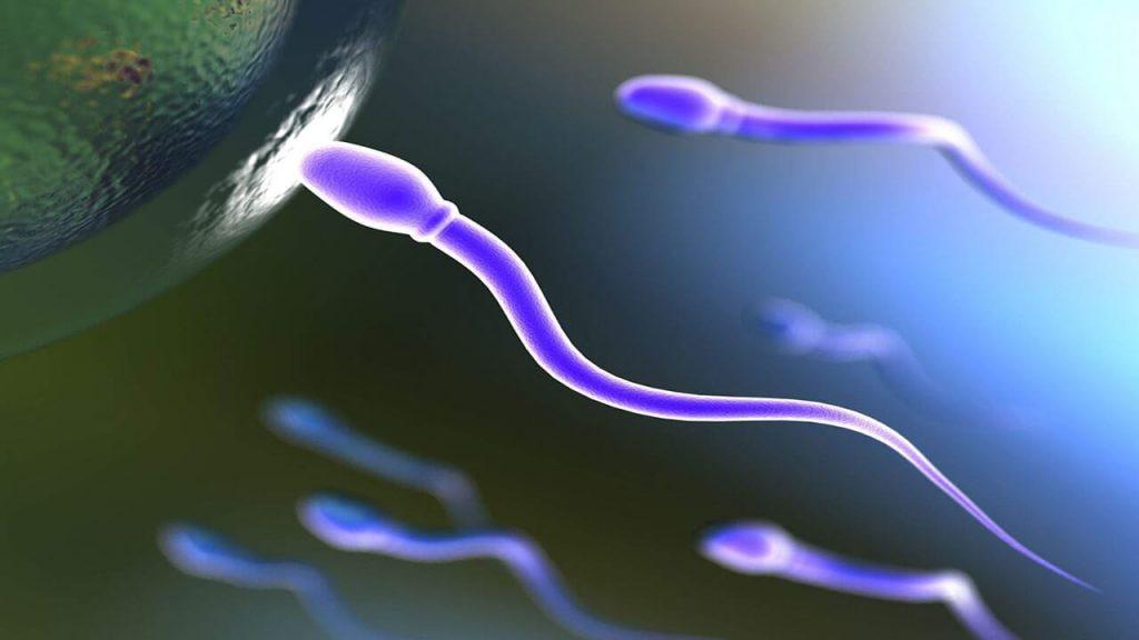 ژله ای شدن اسپرم