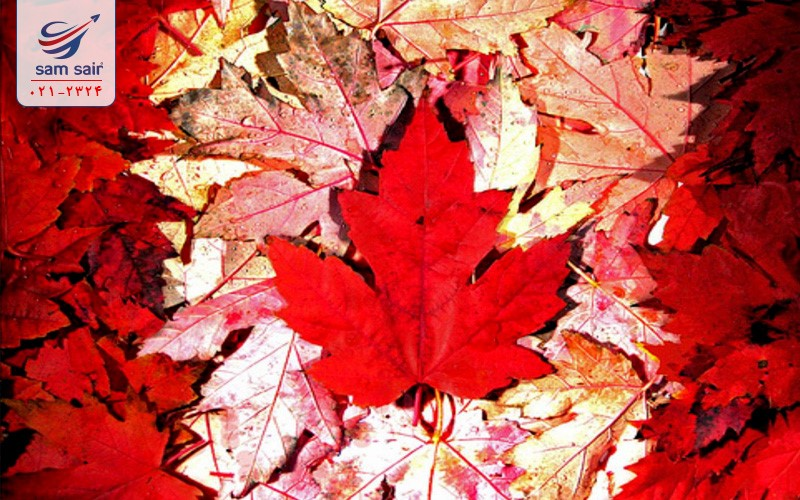 یازده واقعیت اساسی درباره کانادا