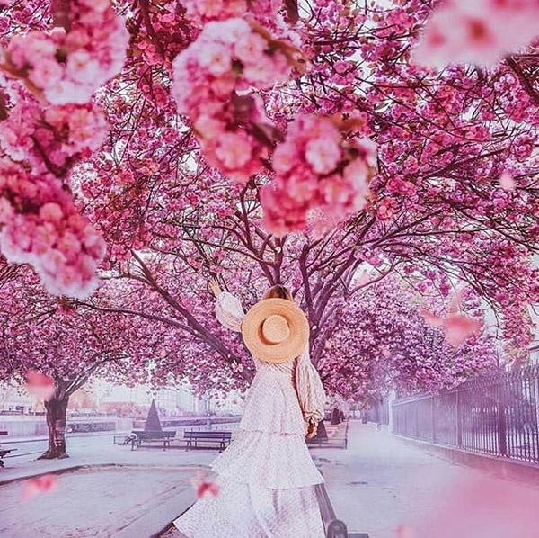 عکس نوشته بهار
