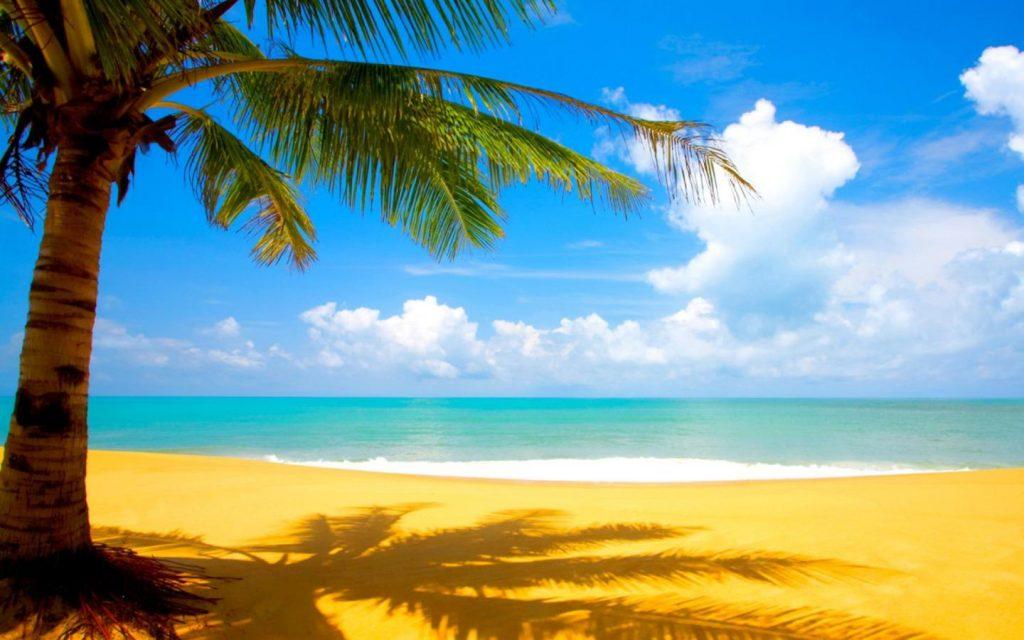 عکس پروفایل تابستان | عکس بگراد تابستان برای گوشی