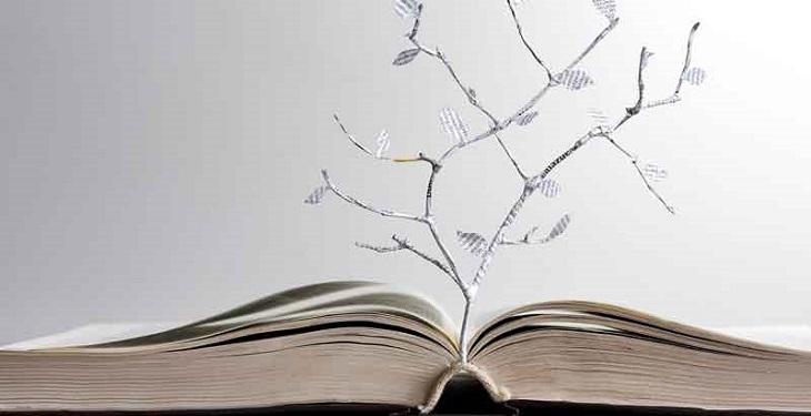 ۱۶ درس مهم در زندگی که هر فرد باید چندین بار آنها را یاد بگیرد