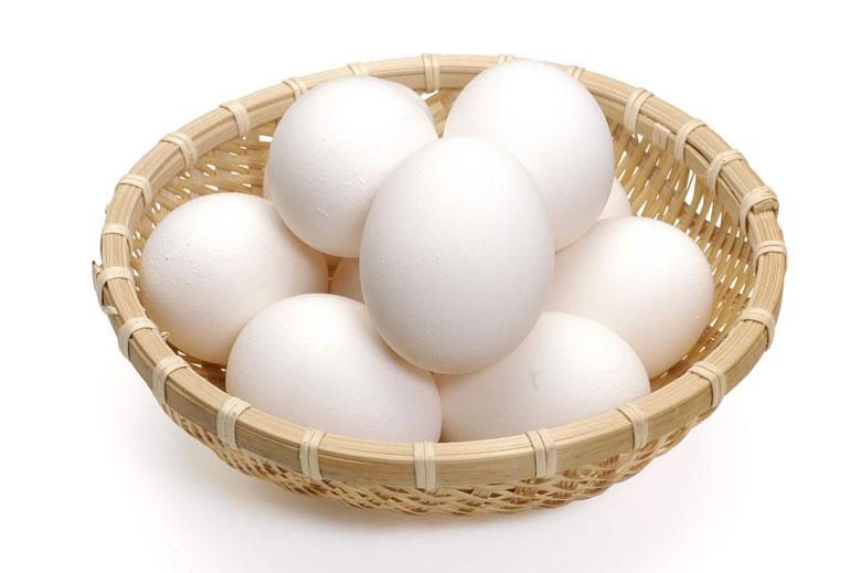 رژیم تخم مرغ