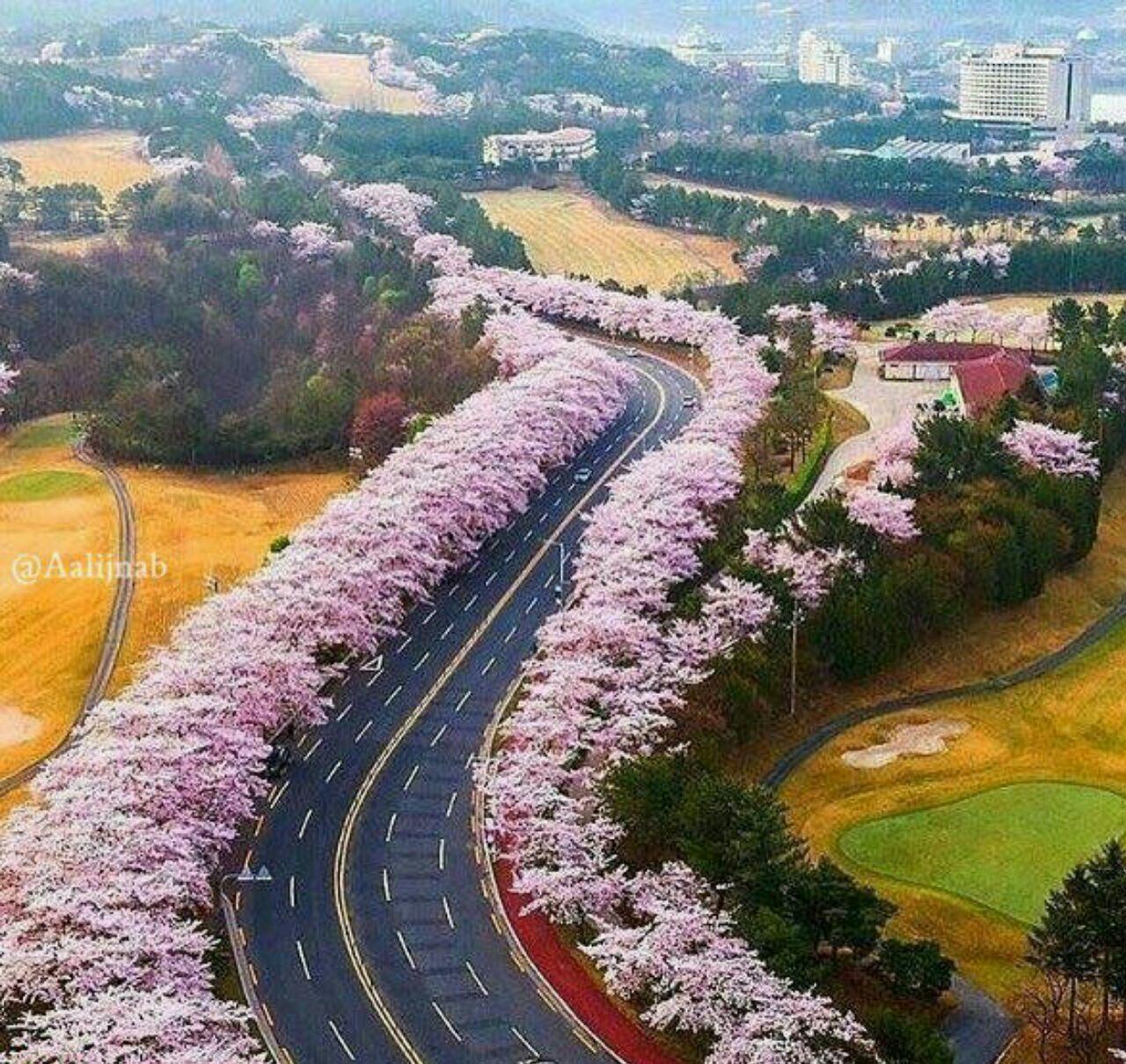 Photo of متن زیبا در مورد جاده و سفر کردن + تصاویر از جاده های زیبا