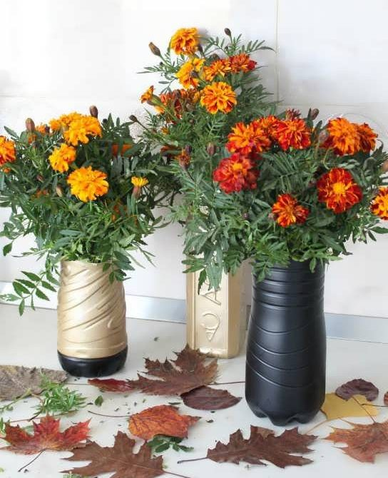آموزش ساخت گلدان با بطری