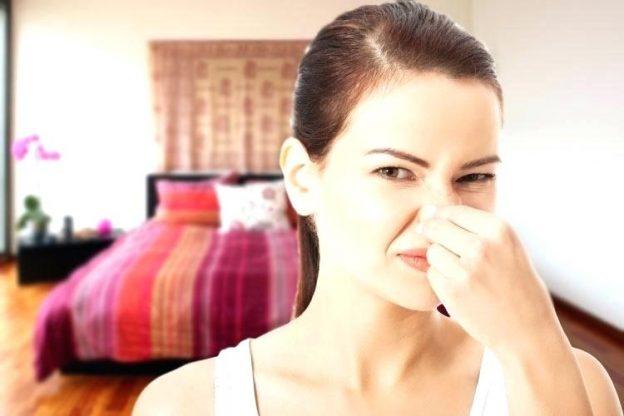 از بین بردن بوی نم در خانه