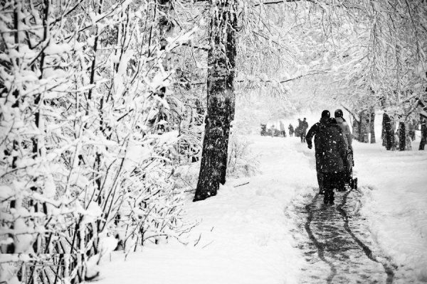 متن های زمستانی