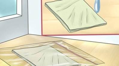 آموزش کاشت سبزه عید با هسته پرتقال + آموزش تصویری با توضیحات