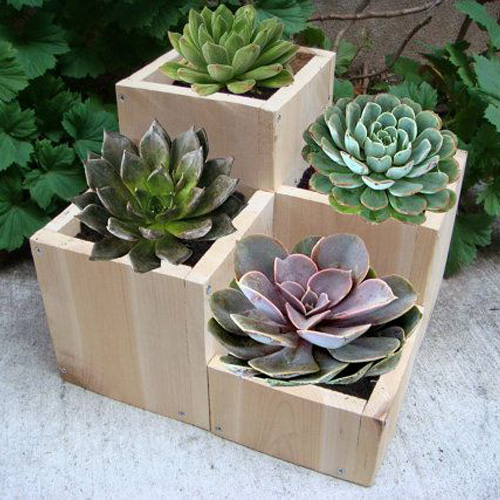 مدل گلدان چوبی
