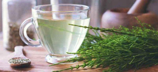Photo of خواص گیاه دم اسب + تمام فواید این گیاه دارویی برای پوست مو و سلامت
