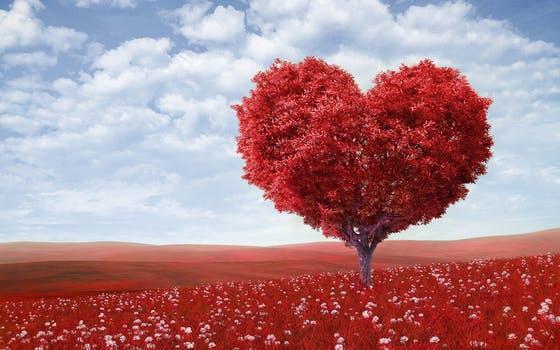 Photo of جملات عاشقانه و رمانتیک بلند + متن های طولانی از جملات احساسی زیبا