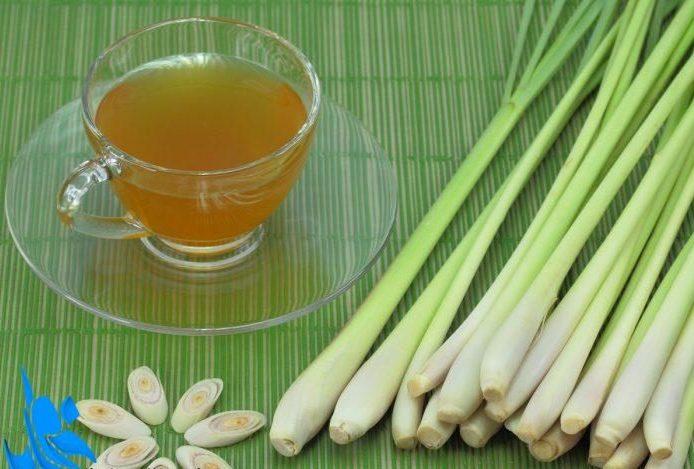 Photo of خواص علف لیمو + اطلاعاتی در مورد دمنوش مفید برای سلامت