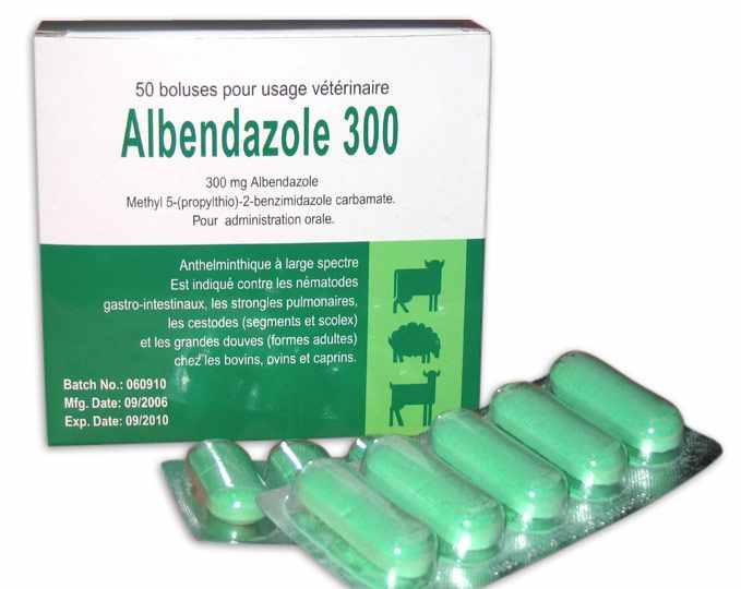 Photo of قرص آلبندازول برای درمان انگل + کاربرد، نحوه مصرف و عوارض مصرف این قرص ضد انگل