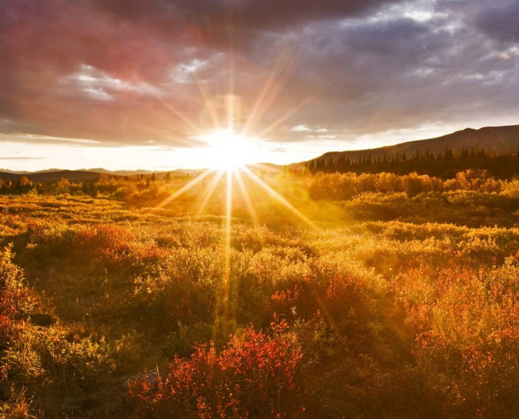 شعر در مورد طلوع خورشید
