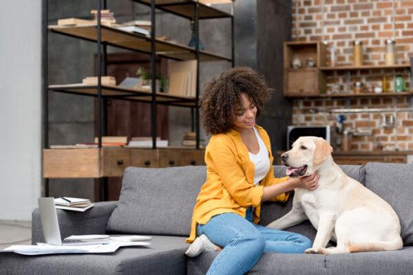بهترین نژاد سگ برای آپارتمان