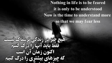 Photo of متن و جملات ناب انگلیسی + زیباترین جملات کوتاه و بلند فلسفی با ترجمه فارسی
