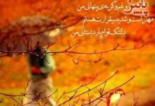 Photo of پیامک های احساسی پاییزی + جملات کوتاه و اس ام اس عاشقانه فصل پاییز
