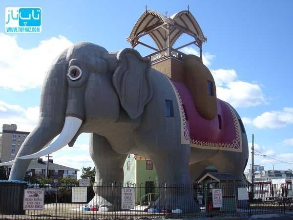 ساختمان فیل شکل