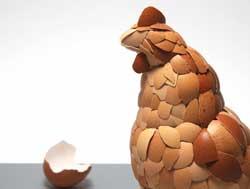 وقتی که پوست تخم مرغ، مرغ شود + تصاویر