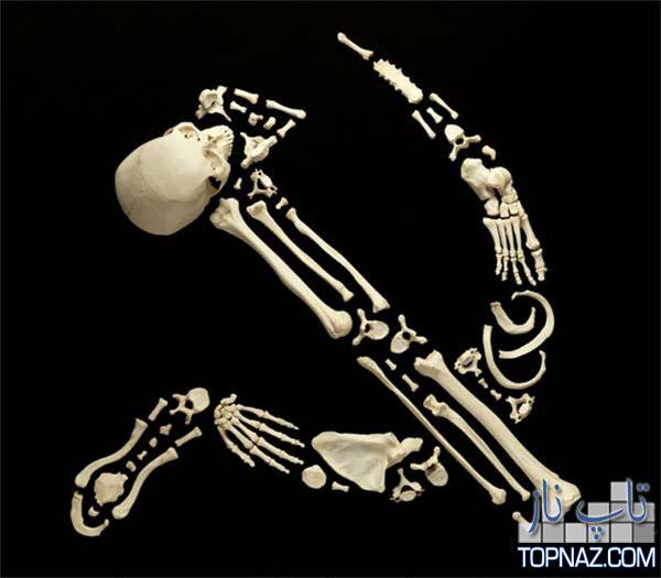 هنرنمایی جالب با استخوان های انسان