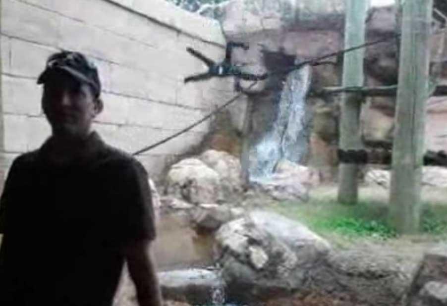 کلیپ ضایع شدن میمون در باغ وحش