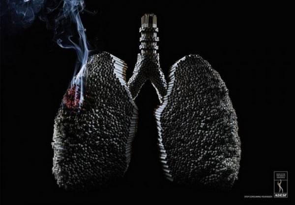 تصاویر دیدنی ضد سیگار