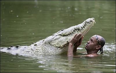 دوستی عجیب ماهیگیر و تمساح غول پیکر!!!